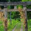TRII(shrine gate)