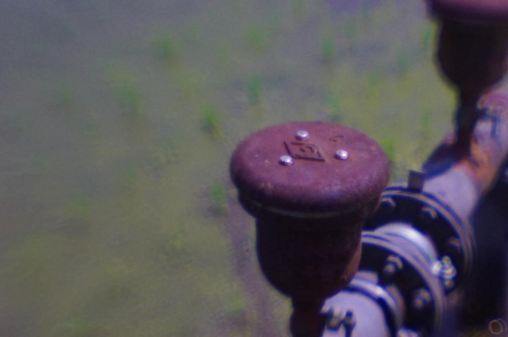 水田の灌漑パイプ (lensbaby、plastic-optic)