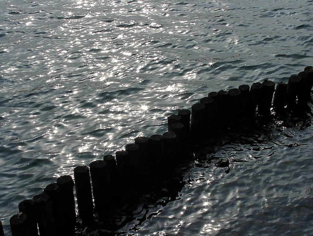 芦ノ湖の水面