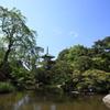 新緑の輪王寺