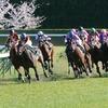 2006 福島牝馬S 2