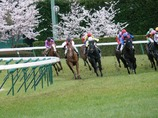 春の福島2006