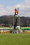 春の福島競馬場