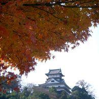 NIKON COOLPIX S51で撮影した風景(紅葉と犬山城)の写真(画像)