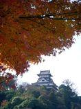 紅葉と犬山城