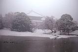 静かな雪と東大寺
