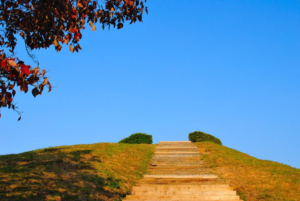 階段を上がれば…。