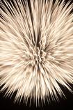 FireWorks #05