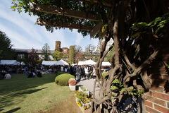 立教文化祭中庭