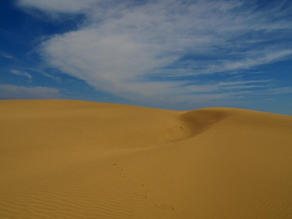 まるで砂漠のよう