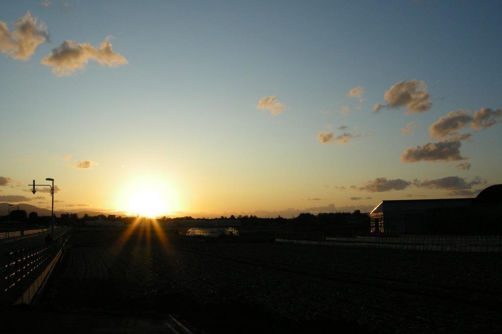 玉葱畑の夕日