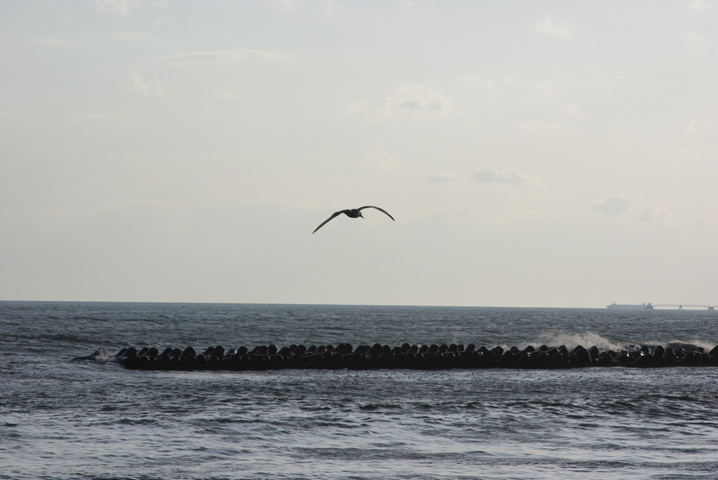 海の向こうを