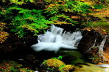 花貫渓谷の秋