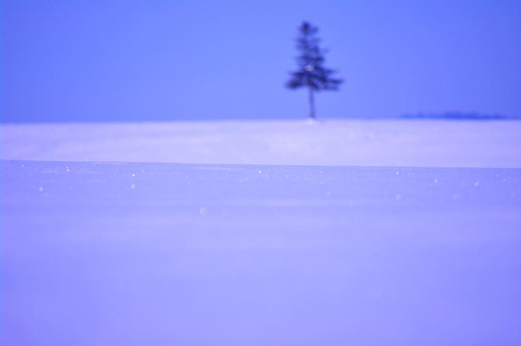 Snow Diamondo