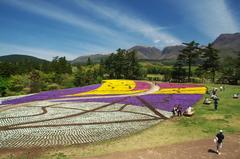 花のアート