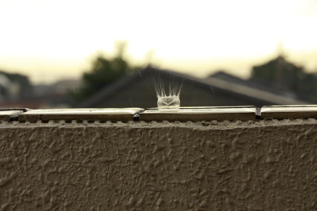 Rain・Crown