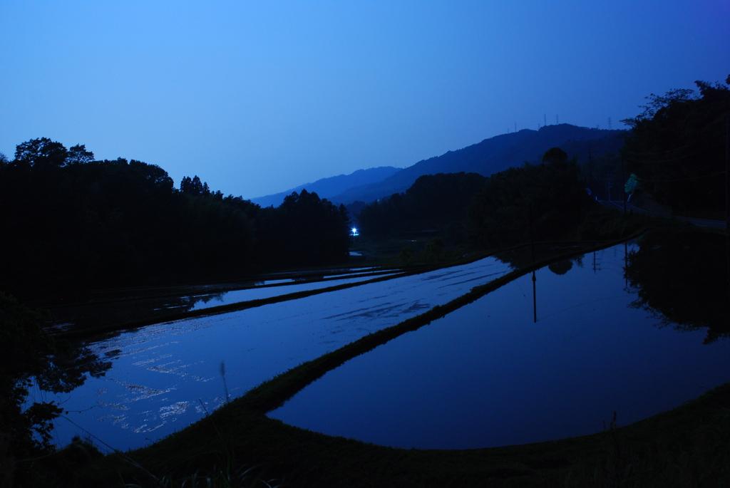 瑠璃色~水田の夜~