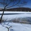 凍りついた白樺湖