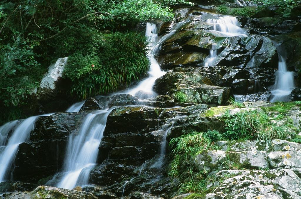 古座川、トヤグラ谷の滝