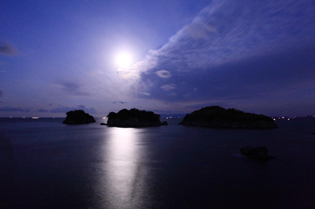 月夜を泳ぐさかな
