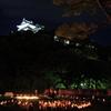 竹燈夜 和歌山城