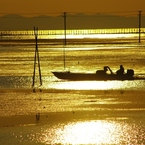 PENTAX PENTAX K20Dで撮影した風景(gold sea)の写真(画像)