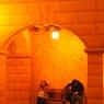 NIKON NIKON D300で撮影した風景(TDS 親子)の写真(画像)