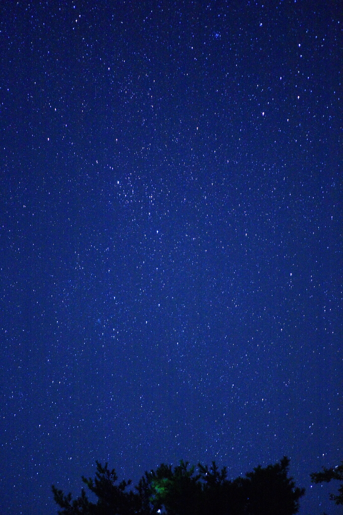 北東の夜空?