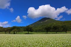 会津磐梯山と蕎麦畑