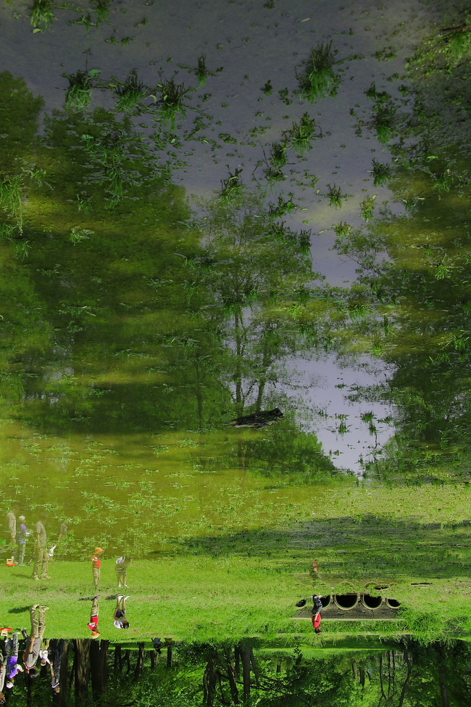湖面に写る世界