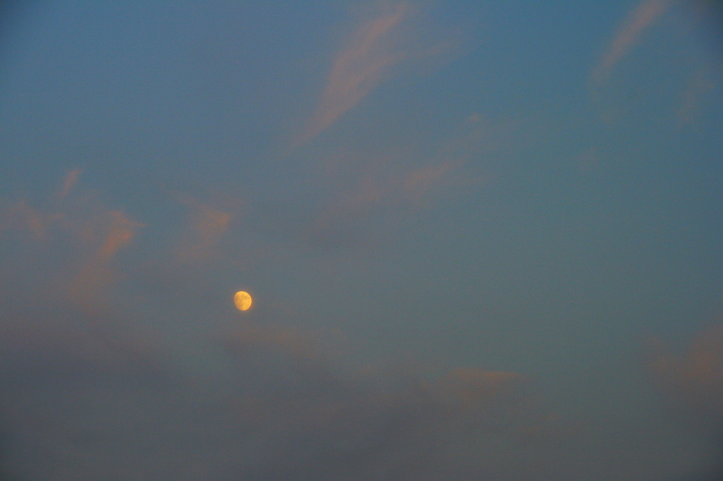 夕暮れに浮かぶ月