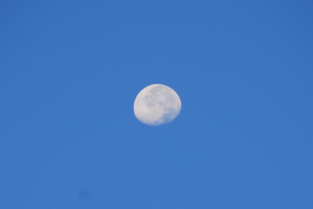 morning moon