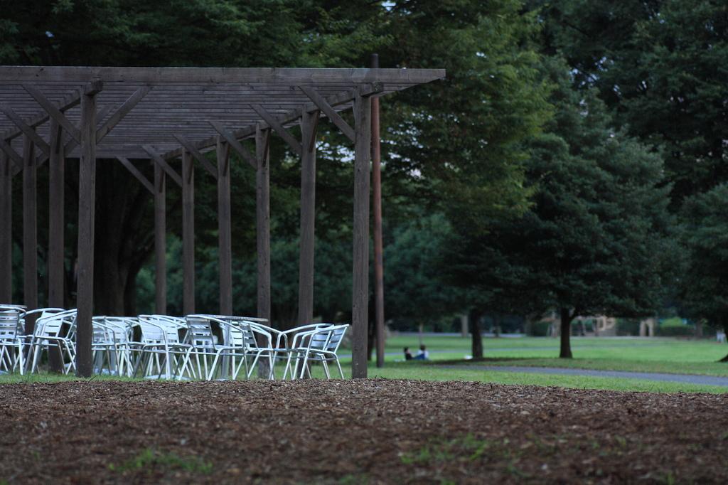 公園のゆうべ1