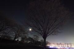 月 vs イルミ