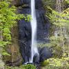 奥入瀬の滝