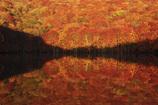 晩秋のワイングラス