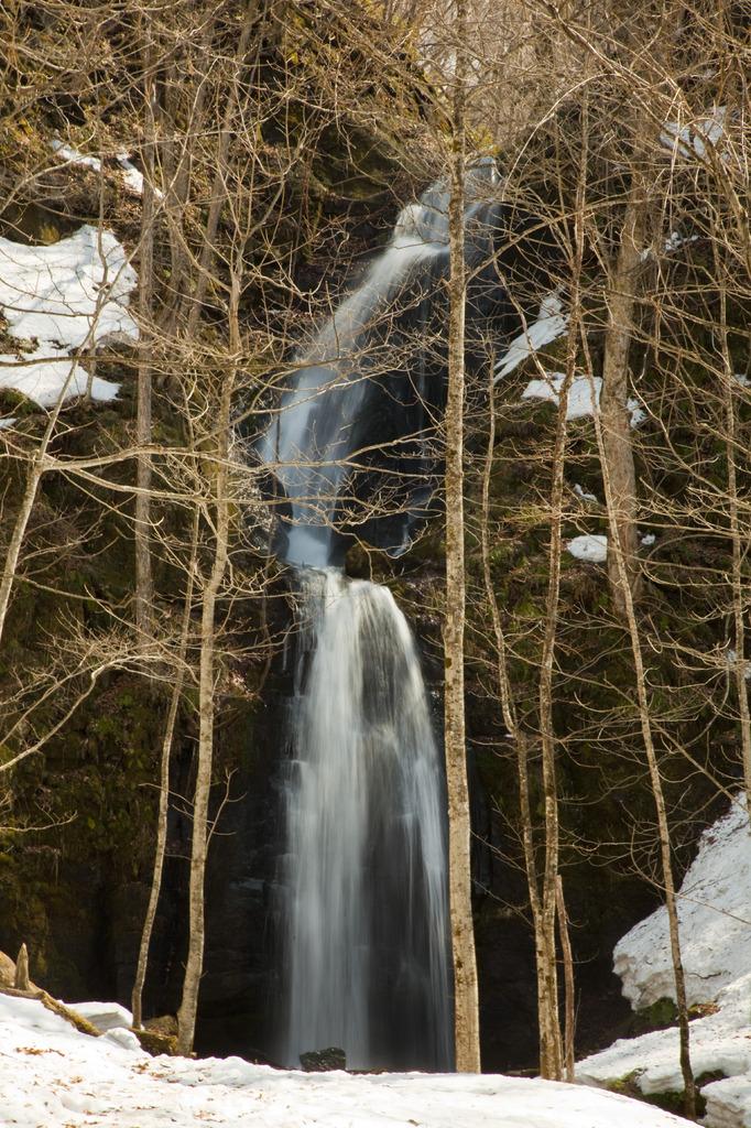 奥入瀬の滝2