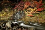 雨の不動の滝