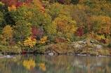 秋の地獄沼