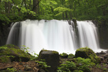 新緑香る滝