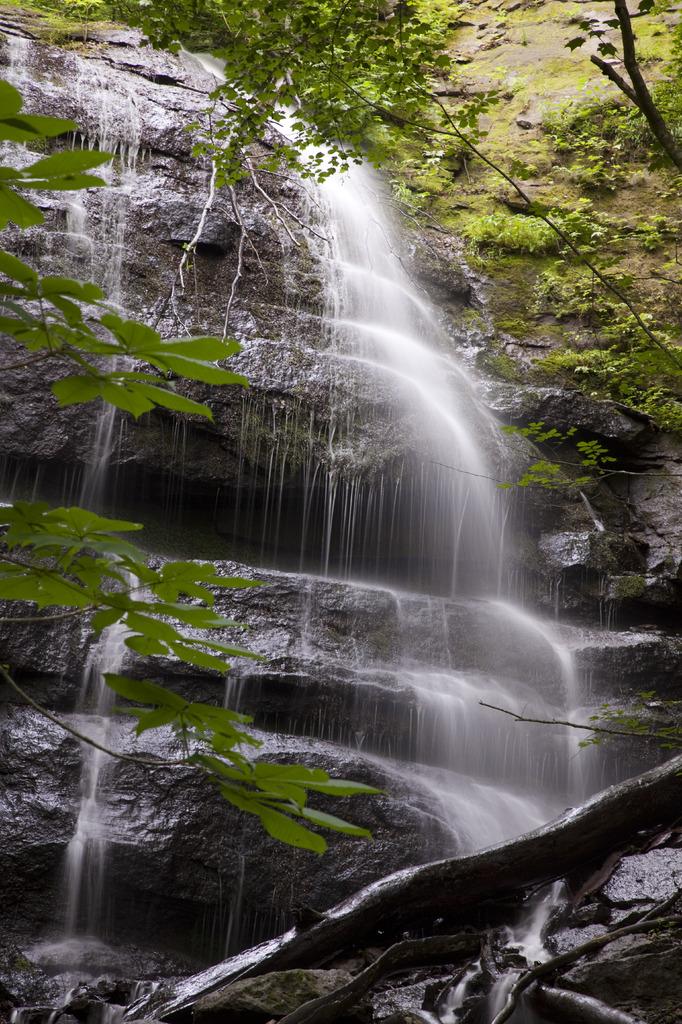 9段の滝 初夏