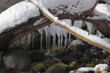 小さな飛沫氷