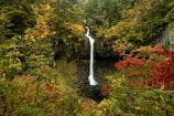 雨の曽利滝