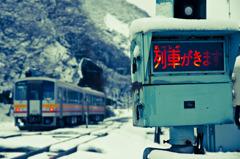 列車が来るよ
