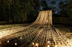 Bamboo Fall4