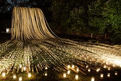 Bamboo Fall3