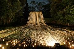 Bamboo Fall1