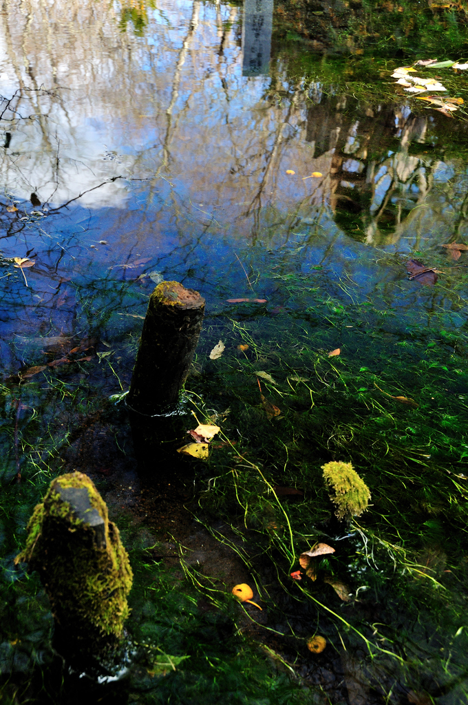 忍野Ⅱ 里を映すお釜池