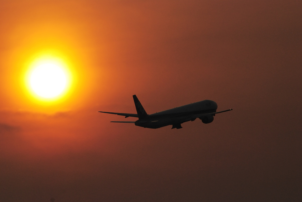 Evening Flight