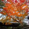 2012京都、秋③